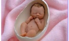 Hamilelikte ilk ay