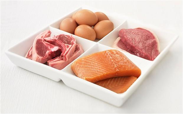 Proteinli besinler