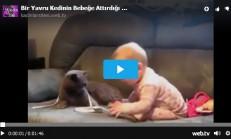 Bir Yavru Kedinin Bebeğe Attırdığı Kahkahaları Görünce Sizde Kahkahalara Boğulacaksınız
